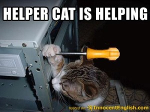 kitty-help-fix-computer