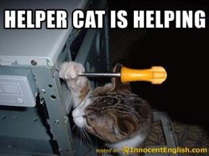 kitty-help-fix-computer